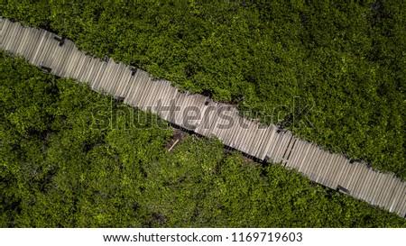Aerial view wooden bridge walkway in forest.