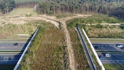 Aerial wildlife crossing also known as ecoduct or animal overpass is structure that allow animals to cross human-made busy highway safely bird view flying slowly backwards over human made structure 4k