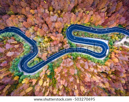 Aerial winding curved road trough the forest. Hi mountain pass in Transylvania, Romania. #503270695