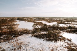 Aerial winter scenery. Early morning at swamp with frozen water and pine tree.