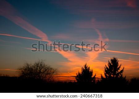 Aeroplane contrails warm sunset light on dark blue sky and tress silhouette in Poland, Europe, Nobody, horizontal orientation.