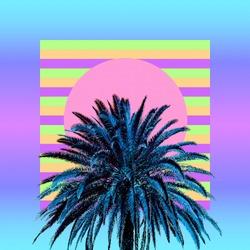 Aesthetic art collage. Palm. Beach mood. Zine culture trend