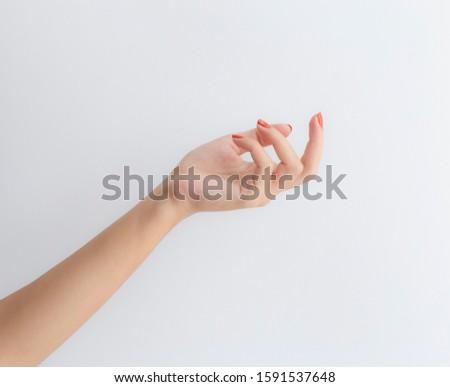 Aesthetic White Female Hand Model