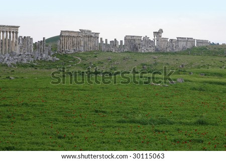 Afamea, Syria, panorama. Ruins of an old city Ruins of an old city. III century BC One of the most interesting monuments of Syria.
