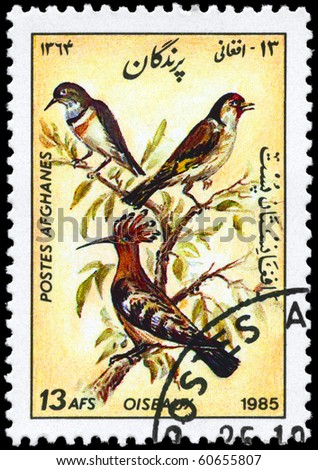 "AFGHANISTAN - CIRCA 1985: A Stamp shows image of a Hoopoe from the series ""Birds"", circa 1985"