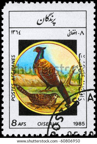 "AFGHANISTAN - CIRCA 1985: A Stamp shows image of a Pheasants from the series ""Birds"", circa 1985"