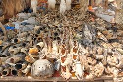 Africa fetish bones in market
