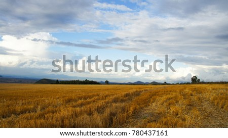 Africa Kenya mountainside farm #780437161