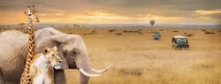 Africa Safari wild safari animals in corner of web banner or social media cover with vehicles and hot air balloon
