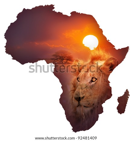 Africa Wildlife Map Design -  Isolated on White