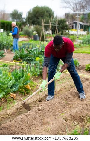 African american man gardener with mattock working in garden outdoor Stock photo ©