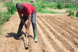 African american man professional horticulturist with garden shovel working at land in garden