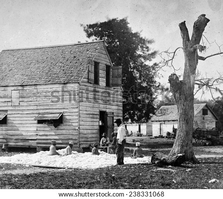 African Americans preparing cotton for the gin on Smith's plantation, Port Royal Island, S.C. Photograph by Timothy O'Sullivan ca. 1862 Zdjęcia stock ©