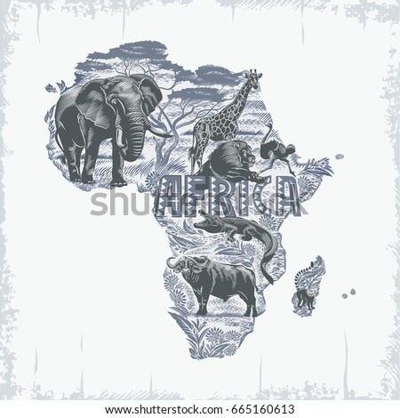 african animals  continent ...
