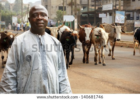 African cattle farmer or herdsman leading his herd of cows on a busy city street
