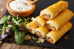 African cuisine: rolls stuffed with minced meat and eggs close-up on the table. horizontal