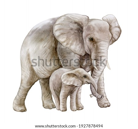 African elephant with a child. Mom and baby. Family isolated on white background. Watercolor. Illustration. Motherhood, childhood Foto d'archivio ©