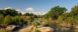 African landscape in the Kruger National Park, South Africa