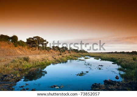 African landscape in the Kruger National Park, South Africa