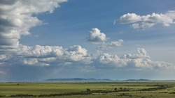 African landscape. The endless savanna is covered with green grass. Countless herds of herbivores graze. On the horizon is a mountain range. There are picturesque cumulus clouds in the sky. Kenya.