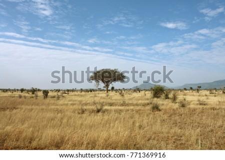 African savanna landscape in Tsavo East National Park, Kenya