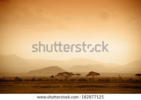 african savannah at sunrise