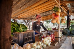 african street vendor, selling onions, cabbage, tomatoes.