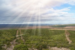 African vast landscape of bushveld and grassland with sun shining through clouds