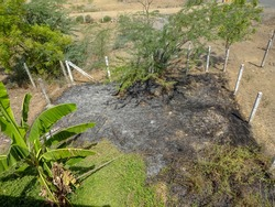 After the fire of backyard behind banana tree full landscape view