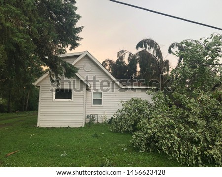 After the tornado destroyed the city, the tree broke over the house, damaged the damaged property. Residence a week after being struck by a tornado. Some clean up has been completed. insurance