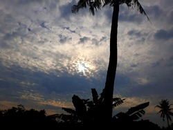 afternoon scenary with uniq cloud and silhouette of coconut tree