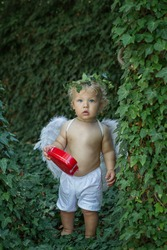 Against backdrop of green ivy stands a calm little angel boy with white curls and blue eyes holds a red heart-shaped tin gift box He has feather wings, on his head - a wreath of a living willow branch