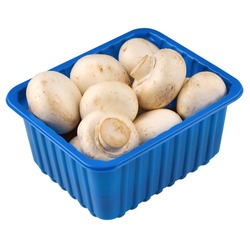 Agaricus bisporus (Chompignon ) mushrooms in a blue box isolated on a white background - 250 gramm. Whole white champignon mushrooms in plasic box. Close up.