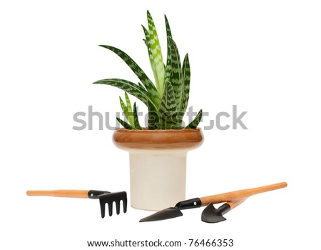 Agave and garden tools isolated on white
