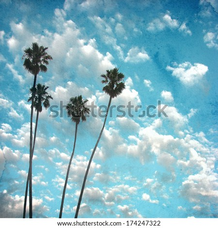 aged and worn photo of cloudy sky with palm trees #174247322