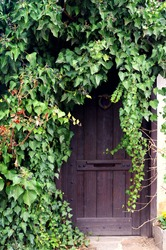 Aged entrance of ancient cave hidden in the mountain, covered with ivy - wooden door in the forest for a fantasy role game