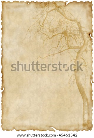 Aged old paper - stock photo