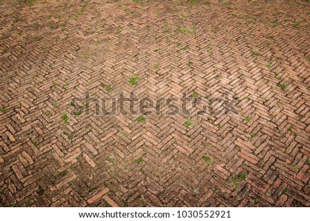 Aged Red Brick Floor In Garden For Background Image Resource And Other Use