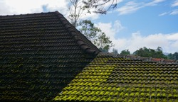 Aged roofing tiles on old house in village. A lot of moss on tiled roof of hovel.
