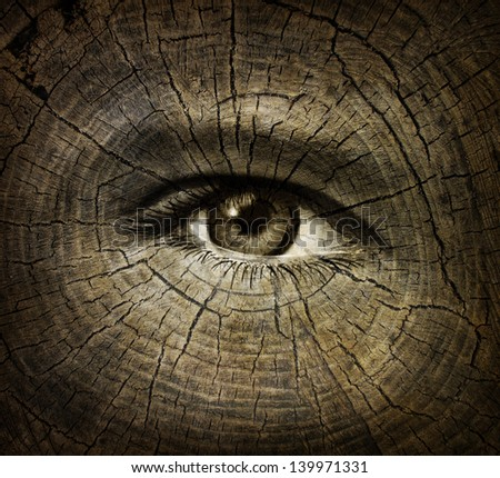 Aging or ageing concept as an open human eye on a wood grain texture of old tree rings as a health care and medical idea of getting older and the changes or decline in function in a person over time.