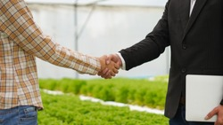 Agribusiness concept, Farmer and businessman shaking hand with hydroponic farm background
