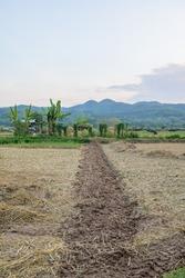 Agricultural Area at Si Mongkol Temple, Nan Province.