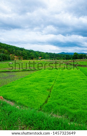 Agricultural area with mountain view of Mae Chaem district in Chiang Mai province, Thailand. #1457323649