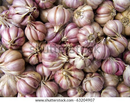Agricultural background, a pile of beautiful garlic