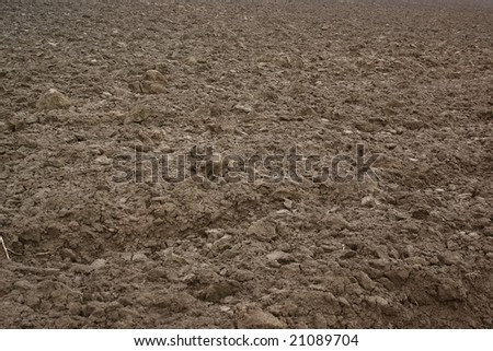 Agricultural field background