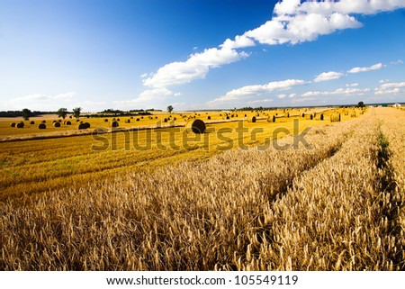 agricultural field on which there is a harvest company