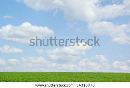 Agricultural field under blue sky and clouds