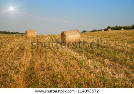 Agricultural field with bales and beautiful blue sky with sun