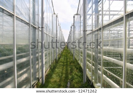 stock photo : Agricultural greenhouses in Holland