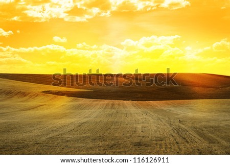 Agricultural land and yellow sunset sky